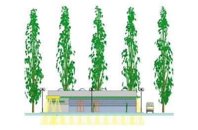 Proiect piata agroalimentara