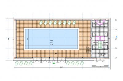 Proiecte piscine